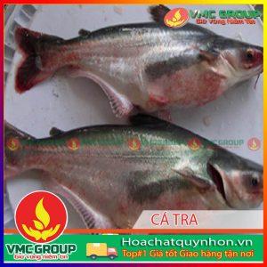 nguyen-nhan-va-bien-phap-phong-tri-chung-vi-khuan-edwardsiella-hcqn